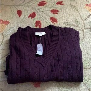 Never Worn V-Neck Sweater from Loft